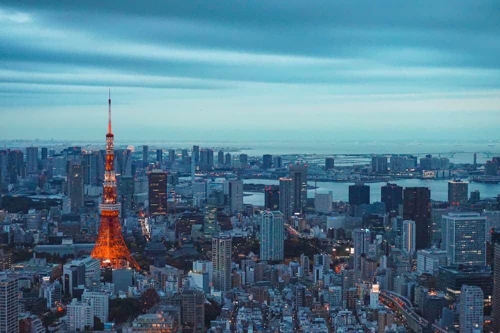 Tokyo cosa vedere