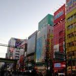 Il paradiso degli otaku