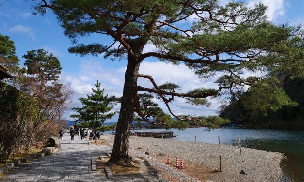 Esperienza del ryokan in uno dei posti più favolosi del Giappone